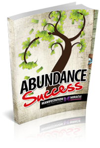 Abundance Success Workbook