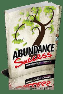 Abundance Success Workbook